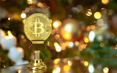 Prediction of a Long-Term Bullish Trend: The Sky is the Limit, Says Ross Ulbricht
